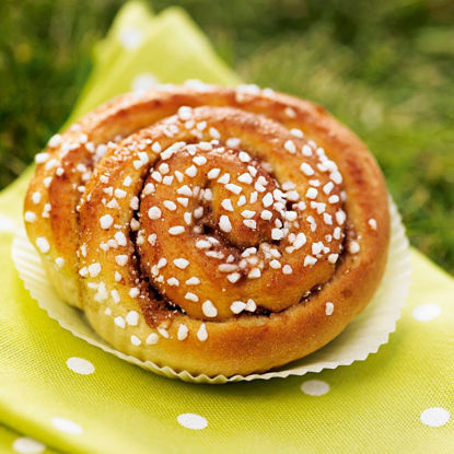 Picture of KANELSNÄCKA 40X70G      FINDUS