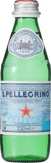 Picture of SAN PELLEGRINO GLASFLA 24X25CL