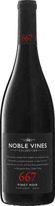 Picture of NOBLE 667 PINOT NOIR 12X75CL
