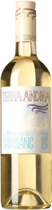Picture of TERRA FRESH SAUV BLANC 6X75CL