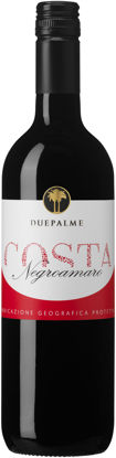 Picture of COSTA NEGROAMARO 12X75CL